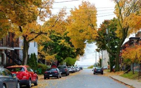 Une avenue du Bronx à l'automne