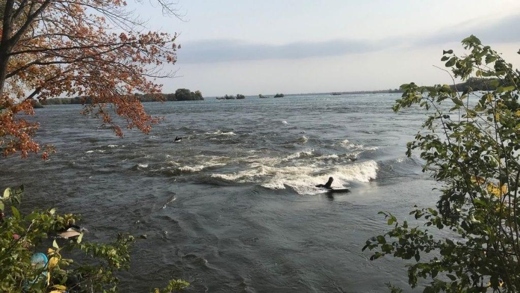 Surfeurs sur la Vague à Guy
