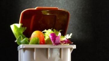 Consultation contre le gaspillage alimentaire
