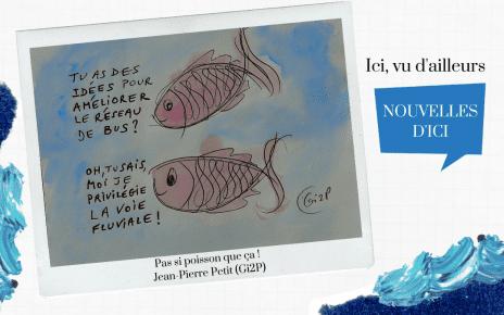 Pas si poisson que ça: consultation de la STM