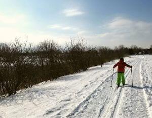 Ski de fond au parc des Rapides