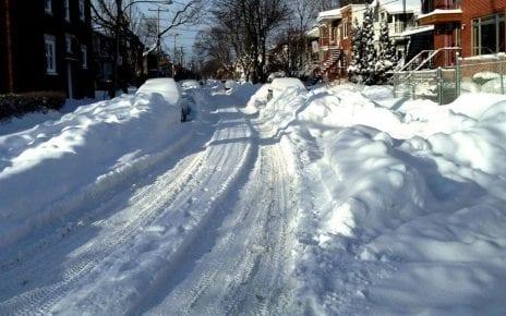 Après la tempête de neige (déc 2012)