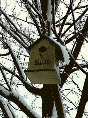 Maison à oiseaux par les Artistes Anonymes du Bronx - LaSalle