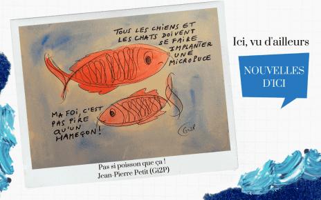 Pas si poisson que ça : Micropuce pour chiens et chats obligatoire à Montréal