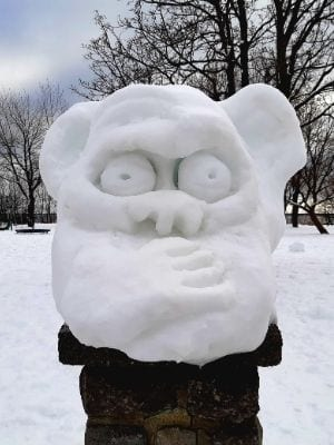 Singe sage de neige à Verdun