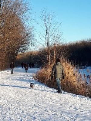 Les marcheurs au parc Angrignon