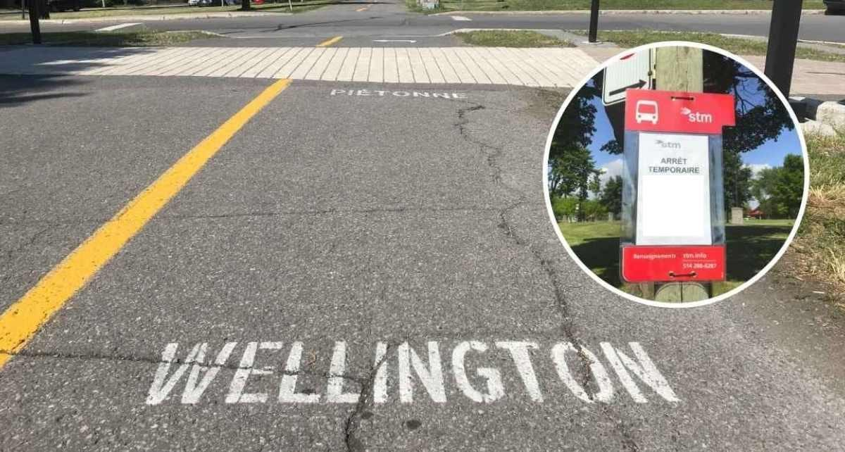 Wellington piétonne, mais ouverte aux cyclistes mais pas aux bus