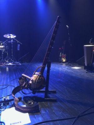 L'instrument à cordes créé par Mamoutou Dembélé (EMDE)- crédit photo : Karine Joly