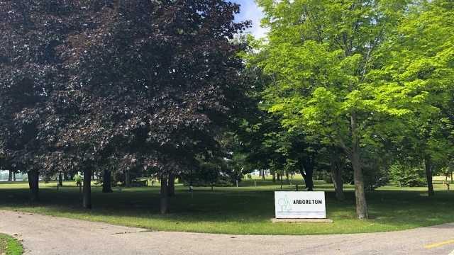 Arboretum du parc René-Lévesque à Lachine